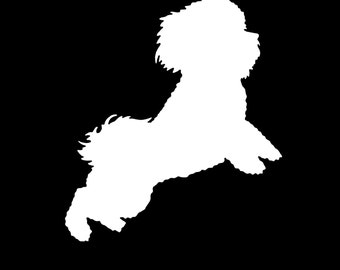 Bichon sticker