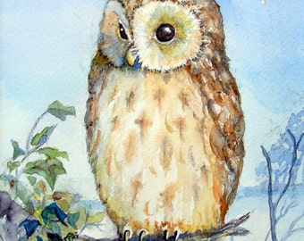 Tawny Owl,print from my watercolour painting.