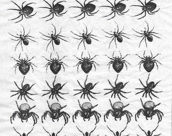 Ceramic Decal - Spider