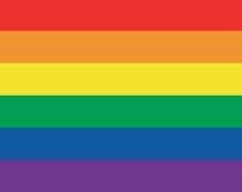 Rainbow Flag 30x60