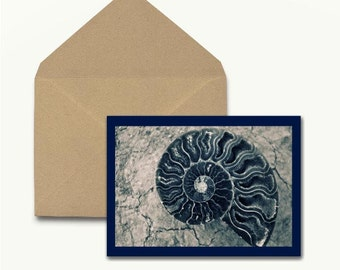 Shell Note Cards – Set of 10 With Envelopes