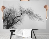 Black and White 12x18 Print - Tree Wall Art, Digital Download | Minimal Nature Photography by Mila Tovar | Monochrome Nature Art Print