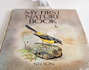 Vintage 'My first nature book'