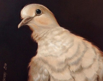 "Original signed oil painting on MDF, ""Unconditional Love"" Collared Dove"