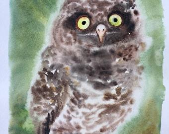 Original Owl watercolor painting ooak art