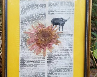 Waterbuffalo Pressed Flower Frame /  Antique Dictionary Page Decor / Recycled Art Display / Repurposed Materials / Pink / Gerber Daisy