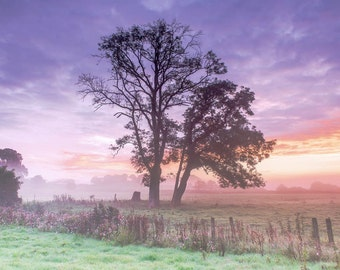 Misty Autumn Sunrise in The Towy Valley, Fine Art Print
