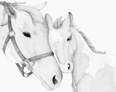 Mother and Foal Horse Heads Note Cards Set of 10