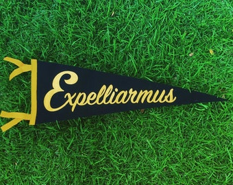Disarming Charm - Expelliarmus Harry Potter Pennant