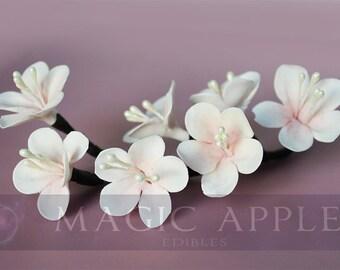 Sugar Cherry Blossom - HAND PAINTED gumpaste cherry blossom floral spray.