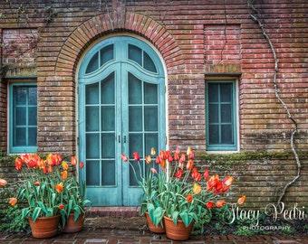 Teal Door, Tulips, Photograph, Wall Art, Home Decor, Garden