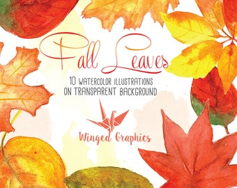 Handpainted and Digitalized Watercolor clip art: Fall leaves, autumn, red, orange, leaf, leaves