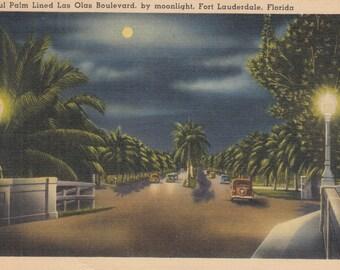 Fort Lauderdale, Florida Vintage Postcard - Beautiful Palm Lined Las Olas Boulevard by Moonlight
