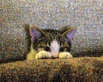 Cute Kitten Photo Mosaic Poster
