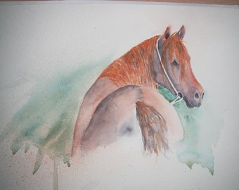 Watercolour painting of Horse