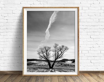 "nature photography, large art, printable art, instant download printable art, black and white, wall art, digital download - ""Across the Sky"""