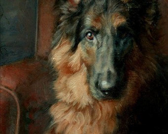 "German Shepherd Art, German Shepherd Dog Painting ""Angus"""