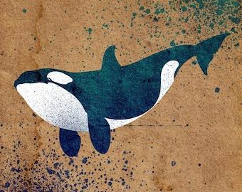 Orca Stencil