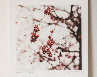 Red Berries, 2012