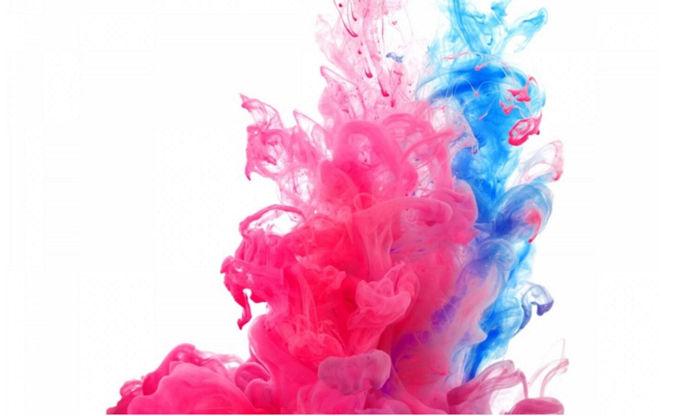 Color Powder Gender Reveal >> Color Marathon HOLI Color POWDER Gender reveal pack 2 lb
