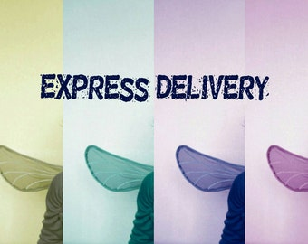 Express Delivery DHL