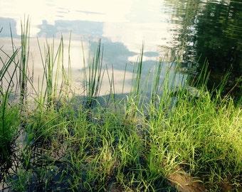 Lake Photograph, 4 x 6 Photograph