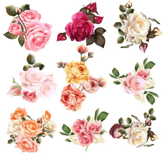 Set Transparent Flower Clipart Wedding Floral Clipart Element