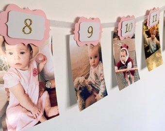 12 Months Photo Banner. Pink and gold. 12 months Banner. Cake Smash. Party Decorations. Birthday girl. 1st Birthday Party. Wall decor.