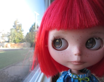 Blythe Doll Eyes Realistic Resin Chips in Hazel Brown