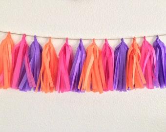 Orange, Pink & Purple Tassel Garland