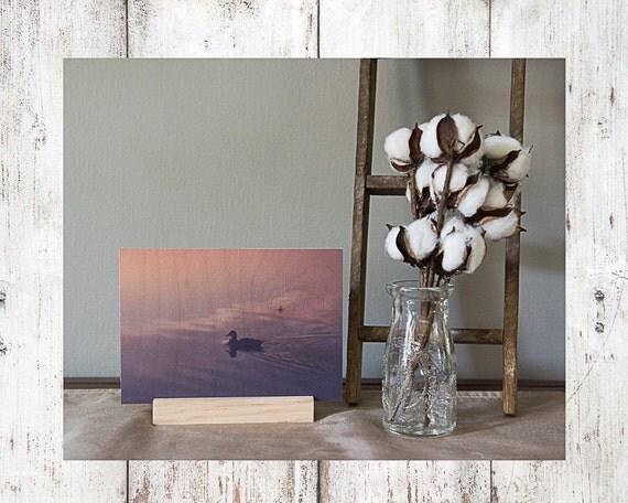 Sunset Duck Photograph - Wood Print - Fine Art Photography - Lake Pictures - Home Decor - Desk Shelf or Mantle Vignette - Christmas Gift