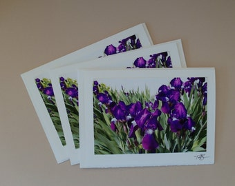 Photo Note Card #05