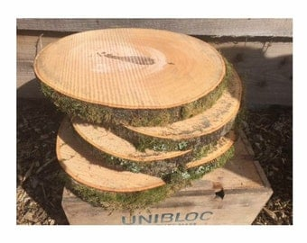 Log slices for table decorations (weddings etc)
