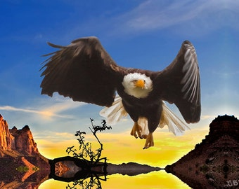 Eagle at Zion