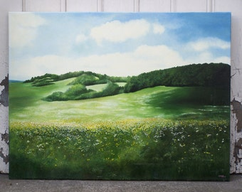 The Prairie. Prairie Meadows, green, flowers, flower, pine woods, green landscape dominant, clouds, country, countryside, nature.