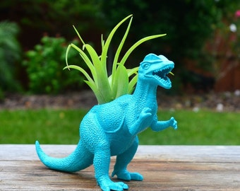 Any Color Plantasaurus / Velociraptor  Dinosaur Planter with Air Plant, Air Plant Holder, Dino Planter, Low Shipping, Great Gifts!
