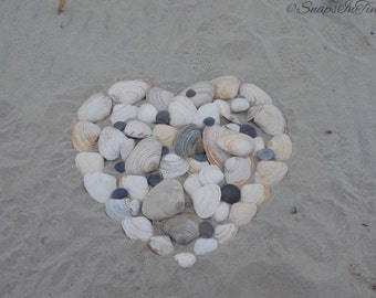 Seashell Heart