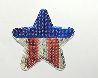 sequin embroidered star
