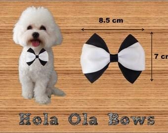 Big Classic Bow, Dog Bow Collar, Cat Bow Collar, Bow Collar, Cat Bow, Dog Bow