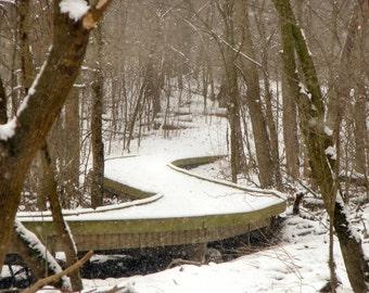 Wildwood Snowy Path