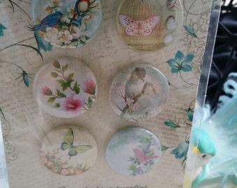 6 piece lemon craft embelishment pack
