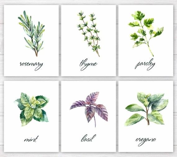 Herbs Print Kitchen Print Kitchen Printable Watercolor