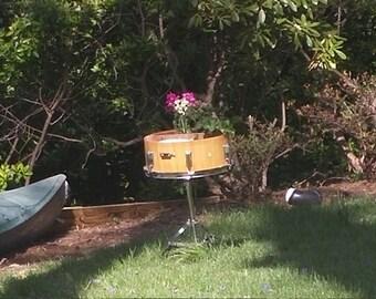 Bird Feeder, Bath, Garden
