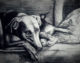 Custom Graphite Pet Portrait A4 (drawing only)