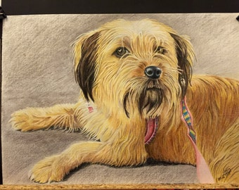 Portrait custom of pet in A4