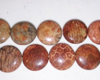 SALE! Fossil coral beads burnt orange beads focal beads beads fossil coral coins coin beads 20mm coin beads