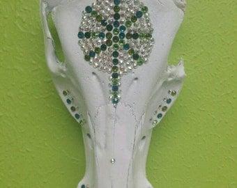 Hog skull with swarovski Crystal