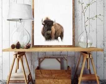 Printable bison, Bison Art, Wild Animal, Bison Decor, Bison Poster Art, Nature Home Decor, Rustic Prints, Nature Print, Woodland Animals
