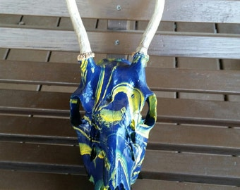 Painted deer skull in blue and yellow