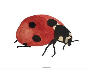 Ladybug, A4 print